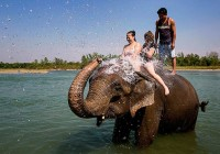 Things to do in Kerala, when visiting for the first time