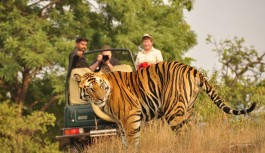 10 Point Packing Checklist When Going on Jungle Safari